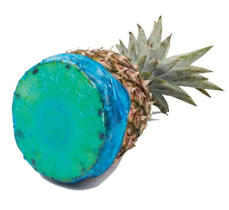 Cover Blubber Food Wrapper Blue Food Grade Cover Pineapple