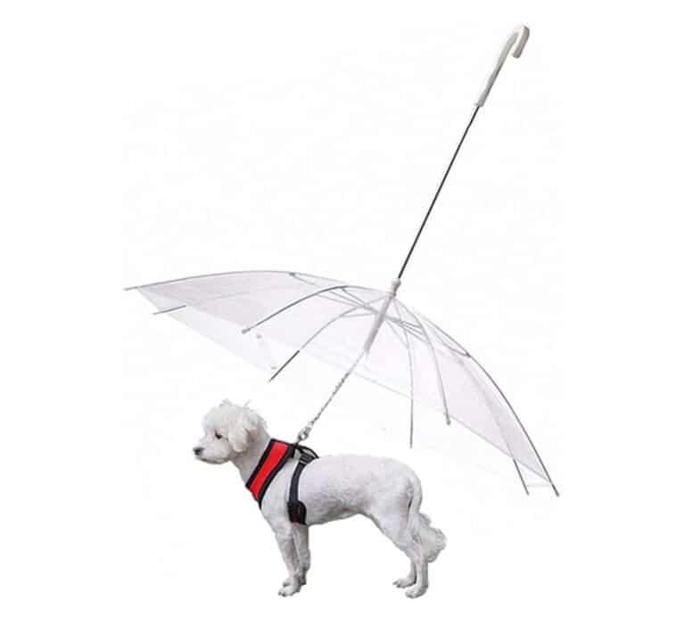 Dogbrella Transparent Dog Umbrella Rainy Day Collar