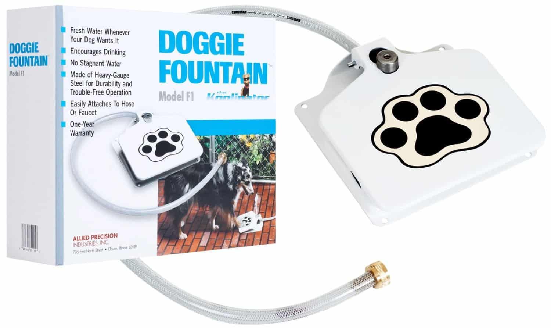 Doggie Fountain Dog Water Fountain Box