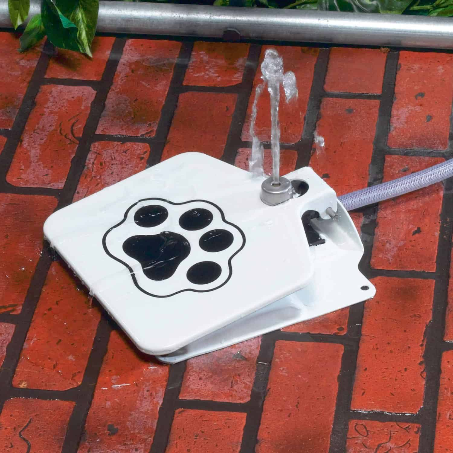 Doggie Fountain Dog Water Fountain Pet Accessory
