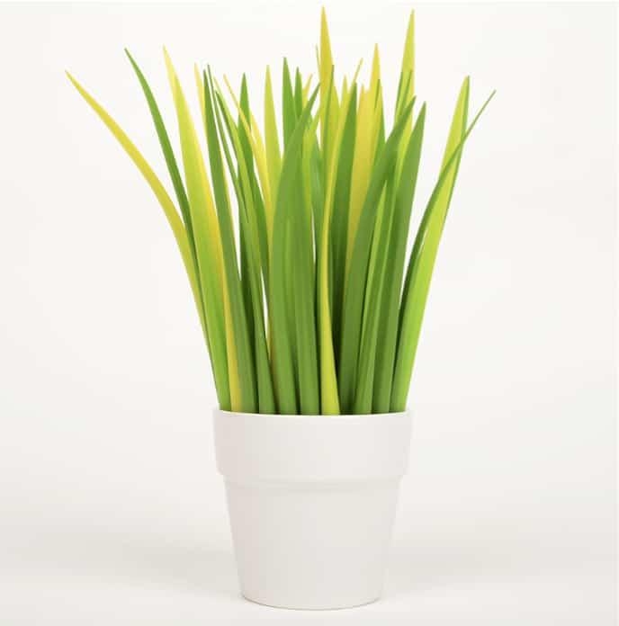 Grass Leaf Pen Planter