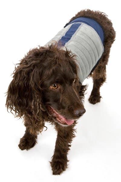 K-Cool K9 Dog Cooling Jacket Summer Pet Gear