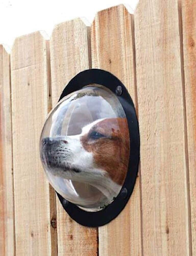 PetPeek Fence Window for Pets Cool Housewarming Gift for Dog Lovers