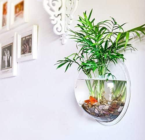Wall Hanging Acrylic Fish Bowl Cool House Decoration