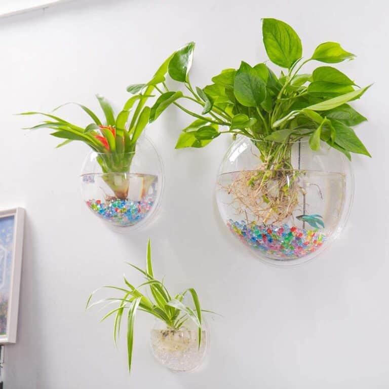 Wall Hanging Acrylic Fish Bowl Indoor Plant Planter