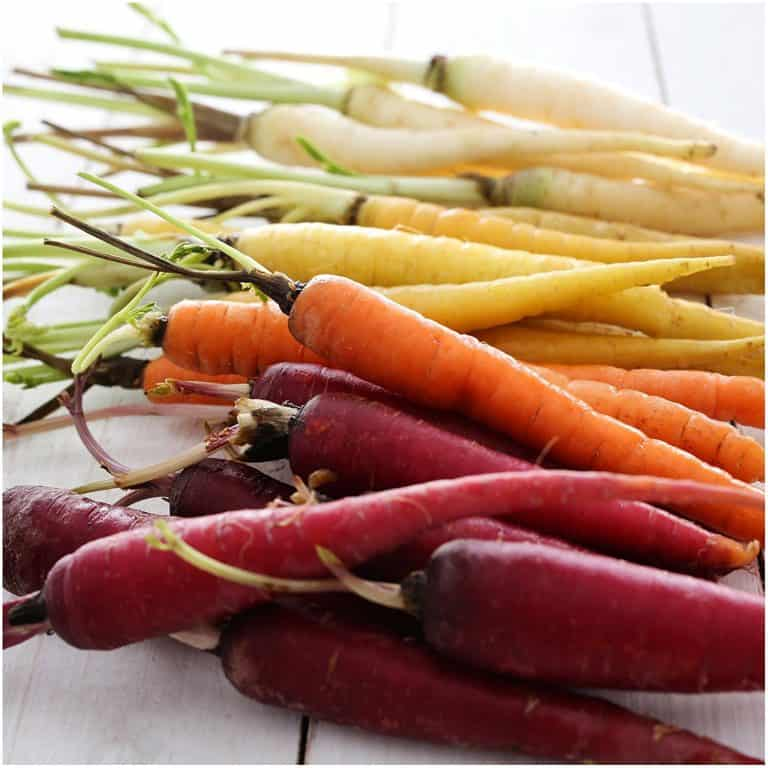Carrot Rainbow Blend Seeds Colorful Vegetables