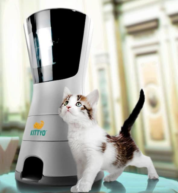 Kittyo Cool Pet Product to Buy