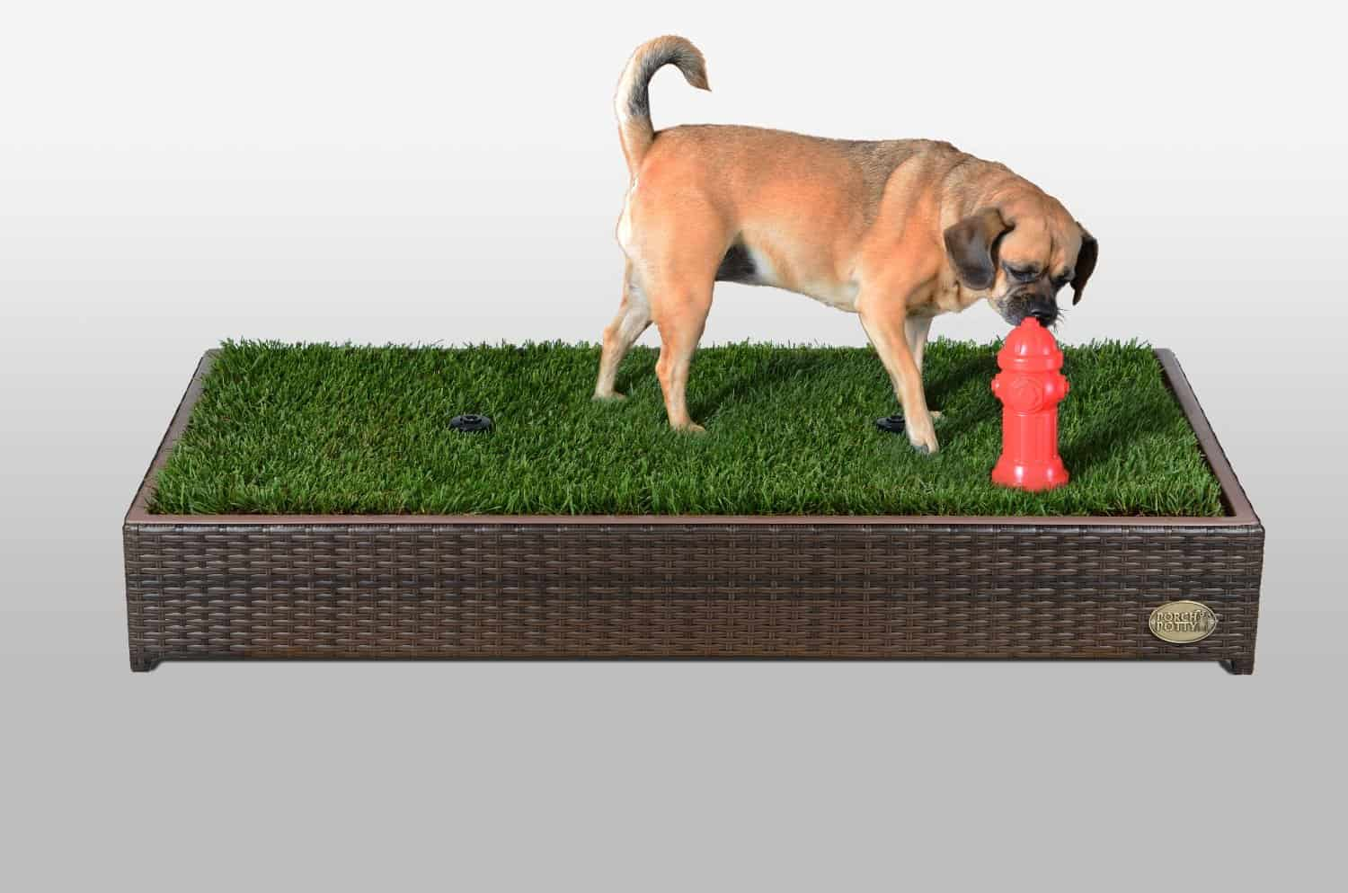 Porch Potty Premium Dog Grassy Litter Box Automatic Sprinklers with Red Fire Hydrant Cute Dog Sniff