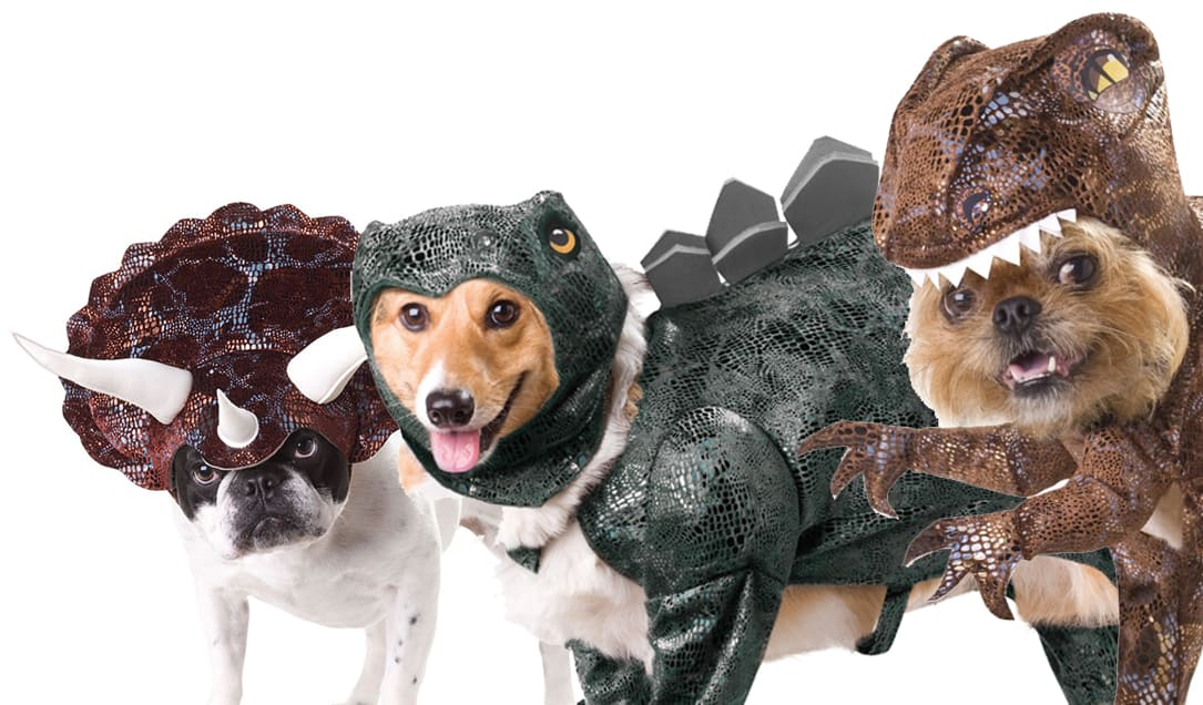 Animal Planet Dinosaur Dog Costumes Cool Triceratops Stegosaurus Raptor Haloween Party