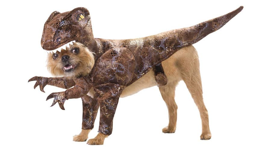 Animal-Planet-Dinosaur-Dog-Costumes-T-rex