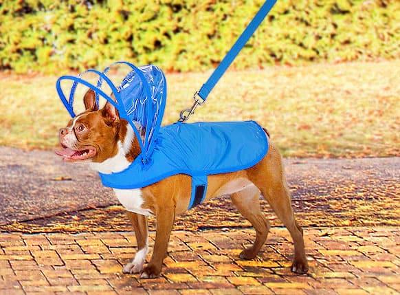 Keep your dog dry and retro futuristic!