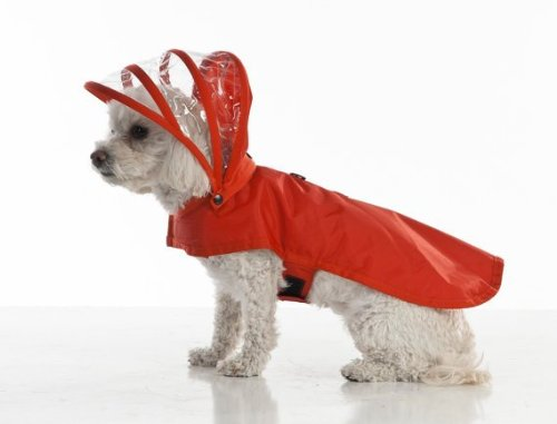Push Pushi Rainbow Dog Raincoat Doglover Gift Rainy Season Red