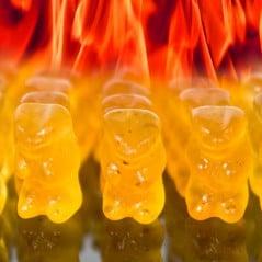 The devil reincarnated in gummi bear form.