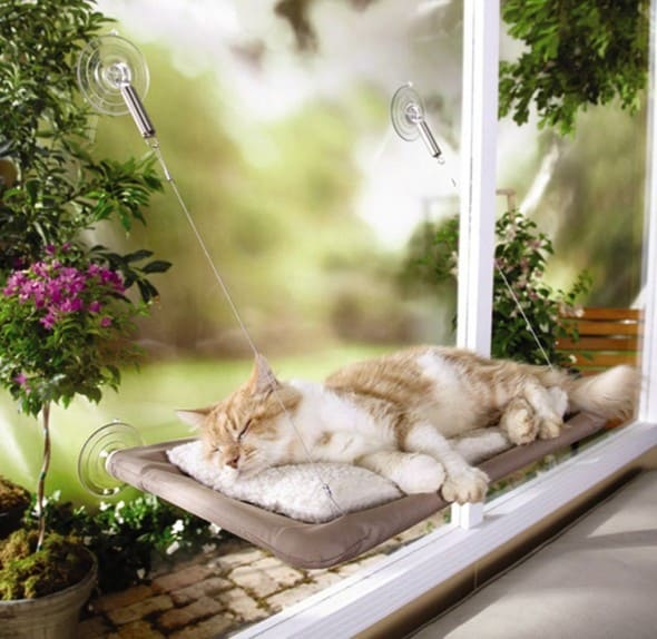 Sunny Seat Window Mounted Cat Bed Cool Pet accessory