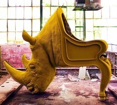 Know how sitting on a rhino feels like.