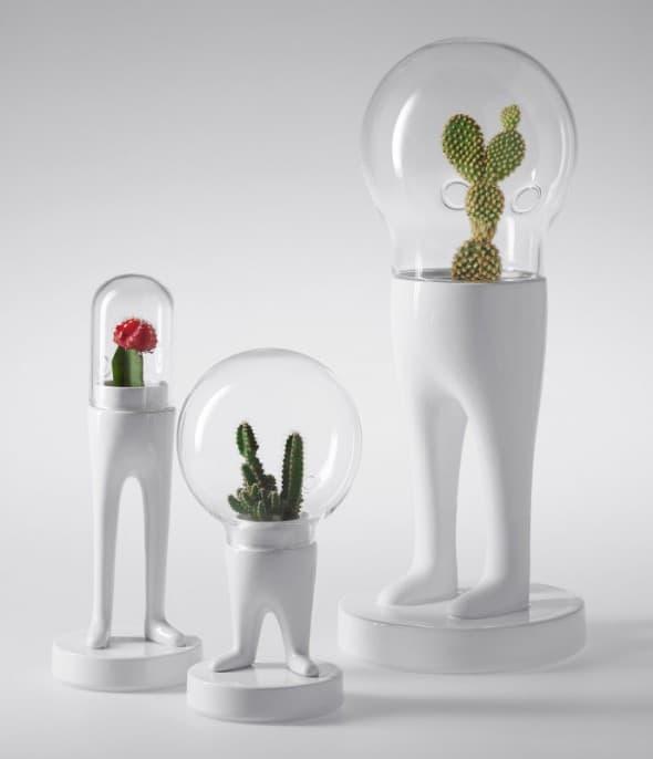 Domsai Terrarium by Matteo Cibic Space Age Cactus Planter