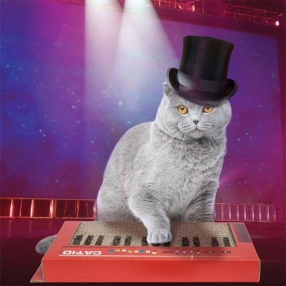 Gamago Cat-Io Cat Keyboard Scratcher Cool Pet Gift idea