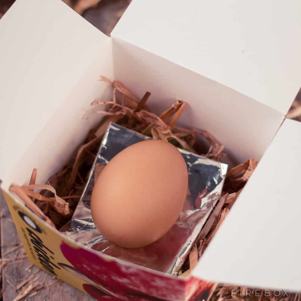 Grow Your Own Chicken All Natural Brown Egg in a Box