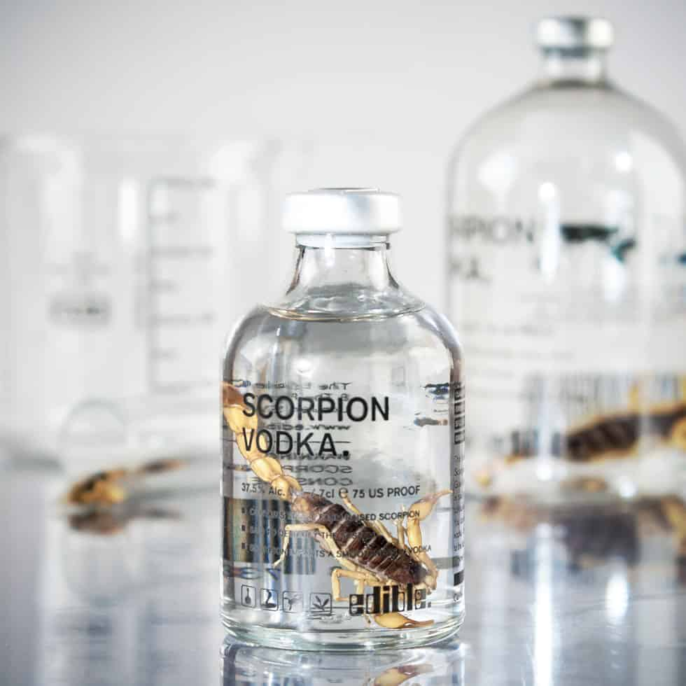 Scorpion Vodka Eccentirc Novelty Item Gift Idea for Him