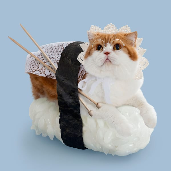Sushi Cats by TandNPeanuts Crochet Weird Idea