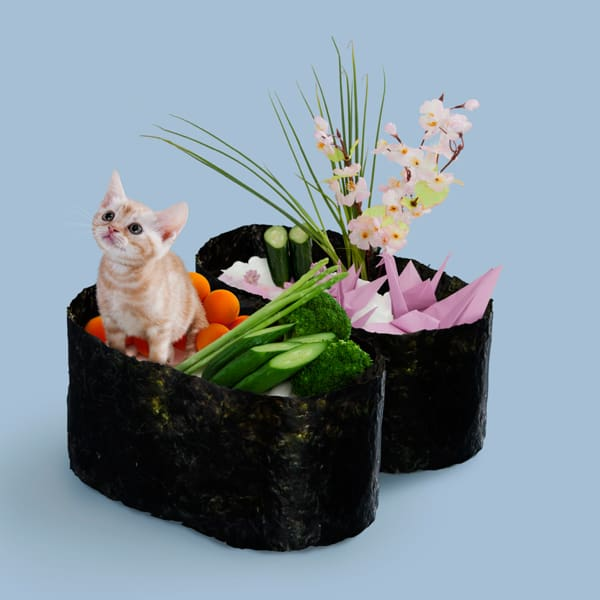 Sushi Cats by TandNPeanuts Feline Food