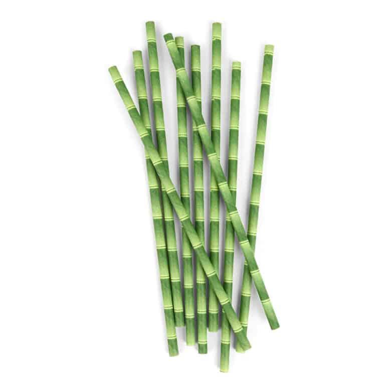 Kikkerland Biodegradable Paper Straws Bamboo Design