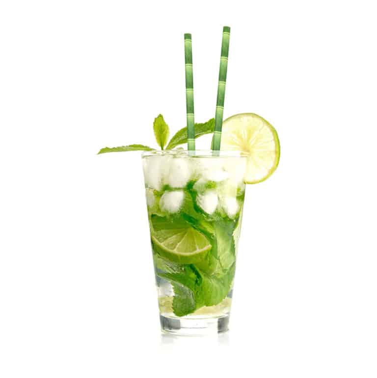 Kikkerland Biodegradable Paper Straws Cool Party Drink Accessory