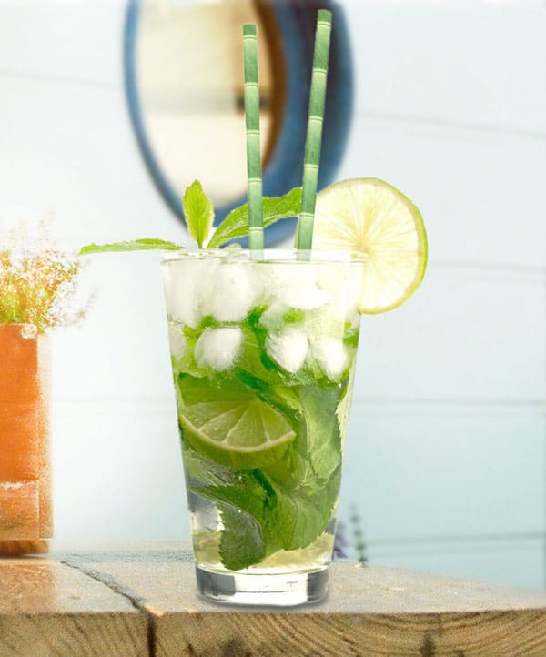 Kikkerland-Biodegradable-Paper-Straws-Green-Themed-Drink
