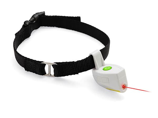 Laser Collar Pet Toy Cool Gift For Your Dog