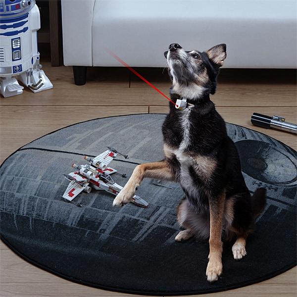 Laser Collar Pet Toy Fun Pet Toy