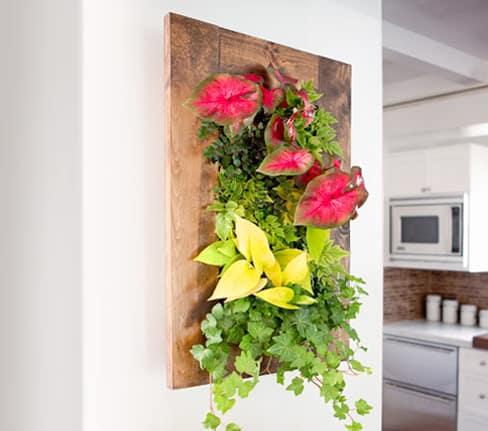Bright Green Grovert Living Wall Planter Wall Garden Idea
