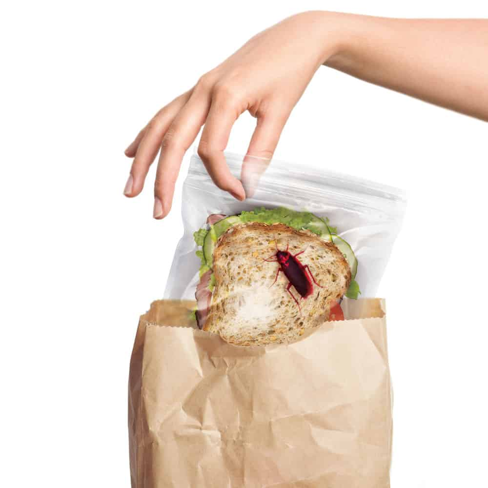 Fred Lunch Bugs Ziplock Sandwich Bags Funny Harmless Prank