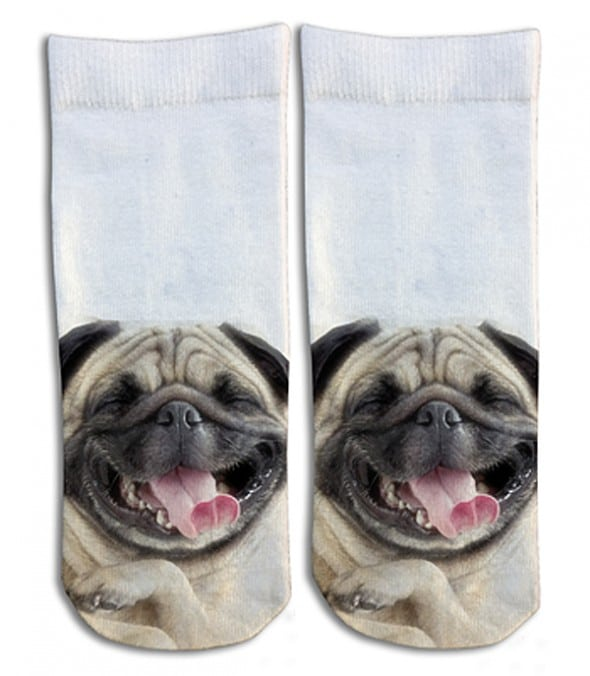 Laughing Pug Barely Show Socks Cool Cute Stuff to Buy Her
