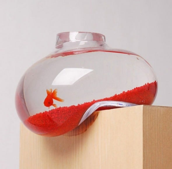 Psalt Design Bubble Tank Cool Stuff to Buy