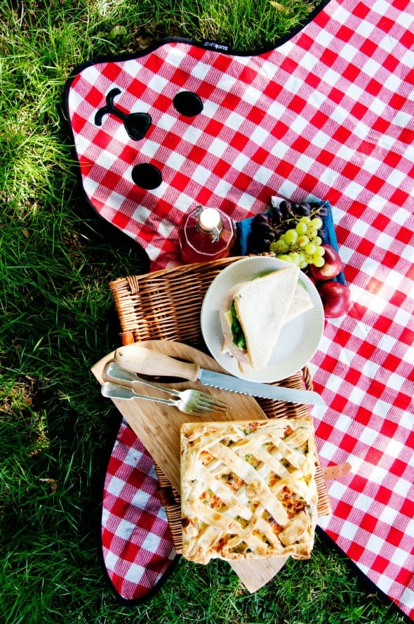 Suck UK Bear Skin Picnic Blanket Cool Gift Idea to Buy