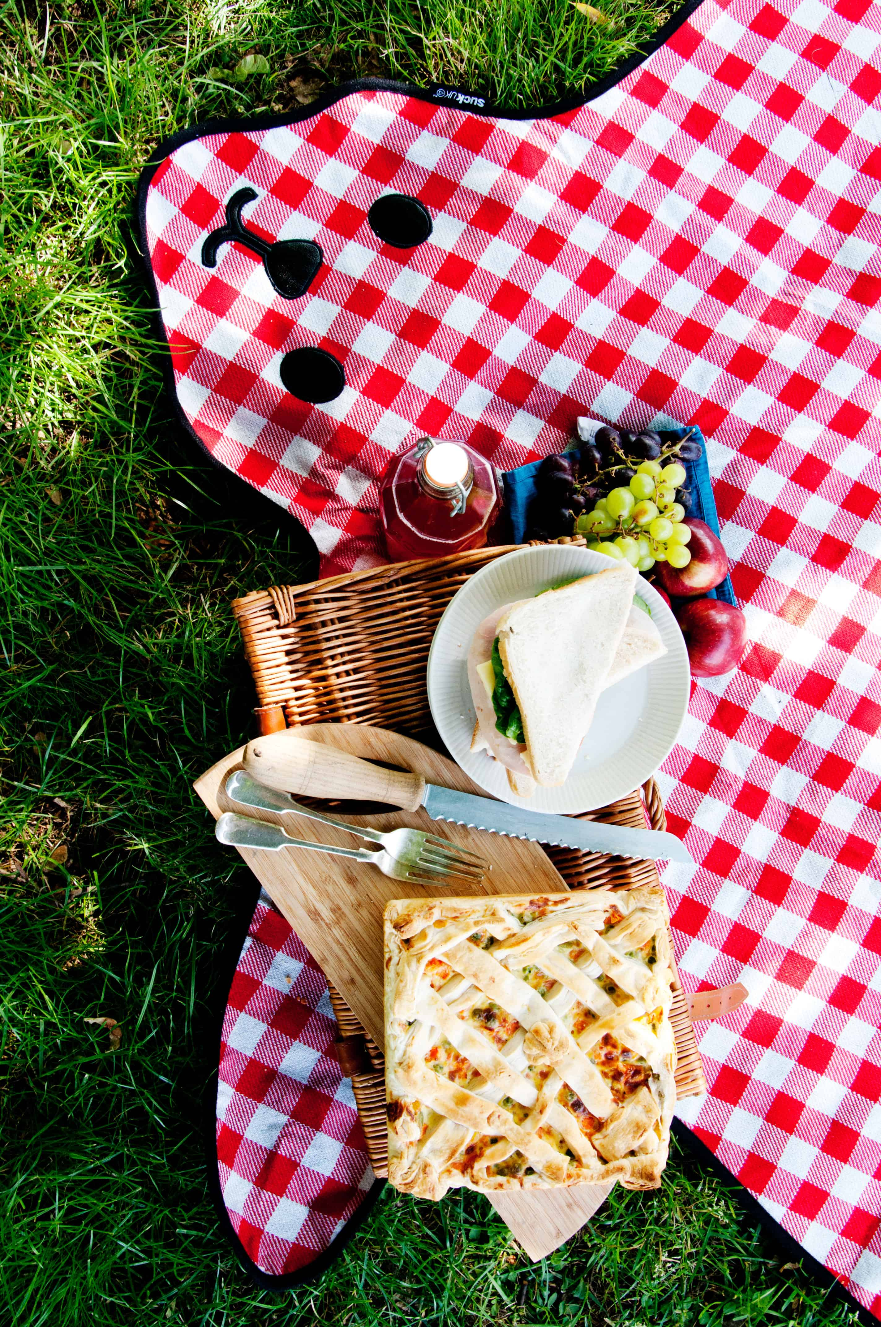 This bear has got your picnic covered.