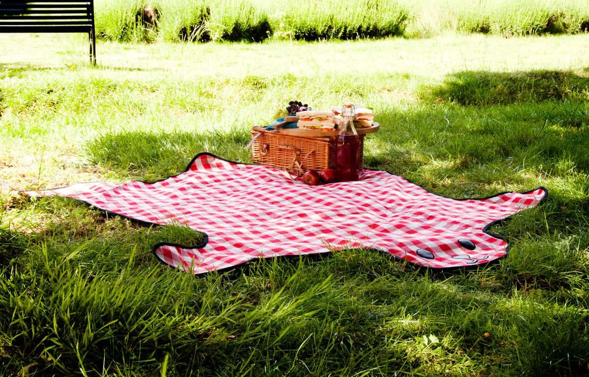 Suck UK Bear Skin Picnic Blanket Fancy and Cute Outdoor Mat