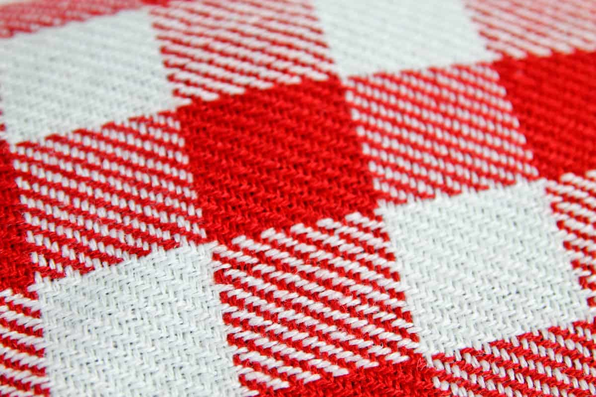 Suck UK Bear Skin Picnic Blanket Red Checker Detail