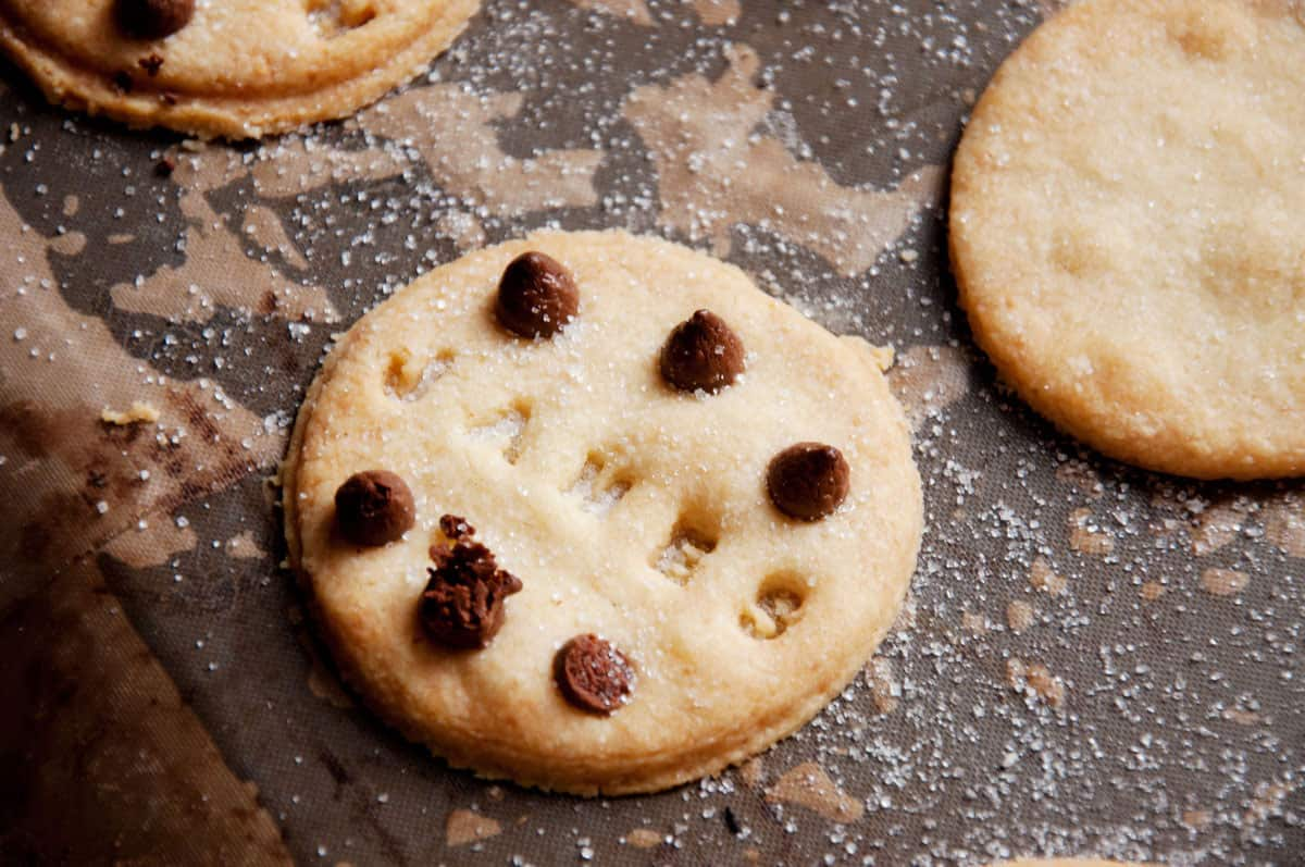 Suck UK Customizable Cookie Stamper James