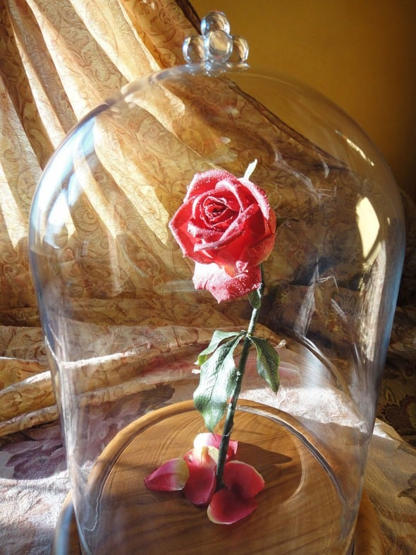 Hands Full of Crafts Beauty and the Beast Inspired Enchanted Rose Romantic Stuff to Buy Her