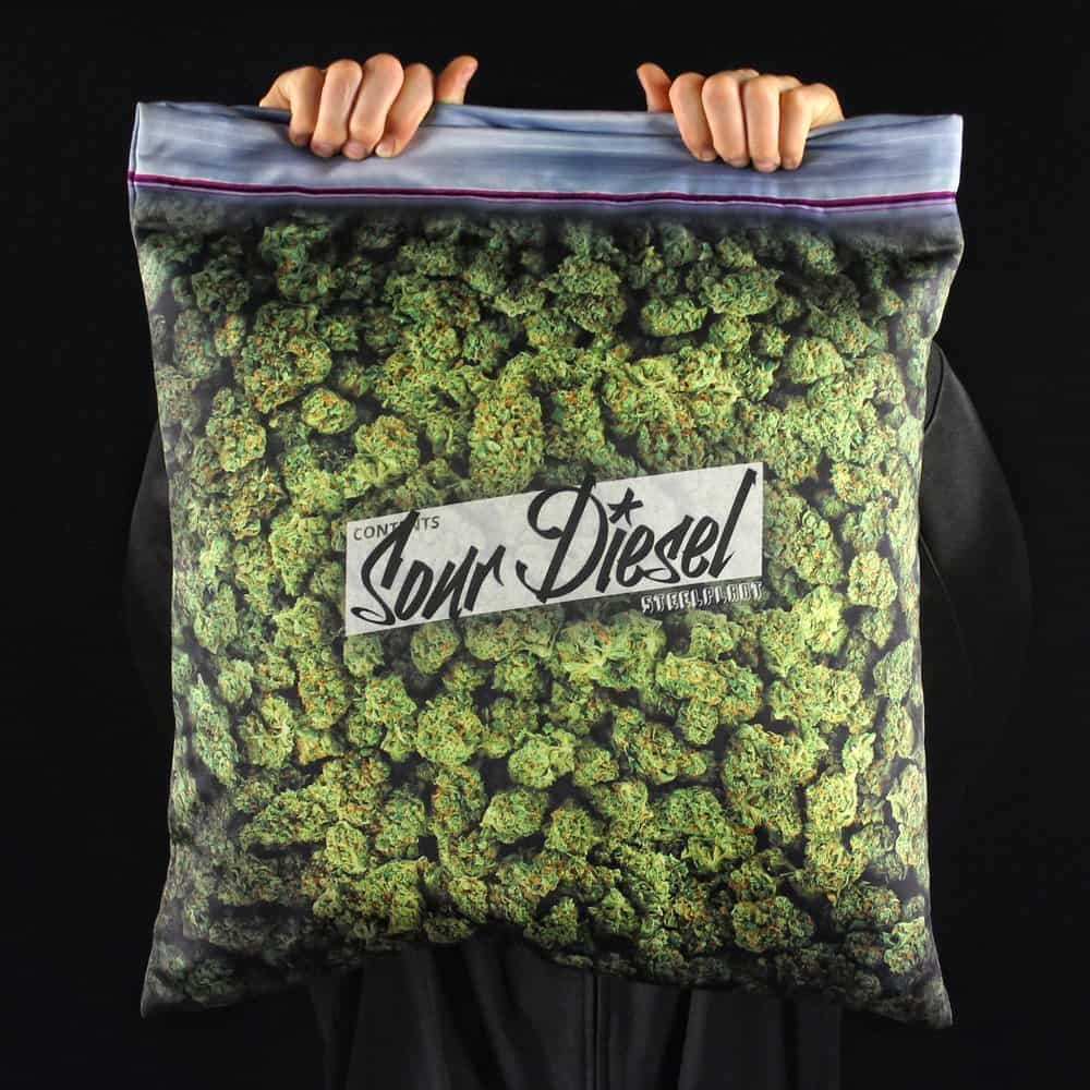 Steelplant Baggie of Cannabis Pillowcase Cool Stuff to Buy Friends