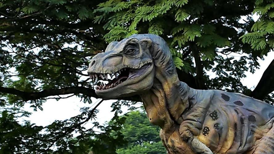 Wizart Studio Baby T-rex Costume Professional