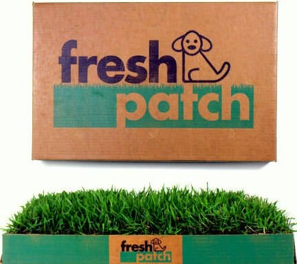 Fresh Patch Disposable Dog Potty Pet Lovers Must Have