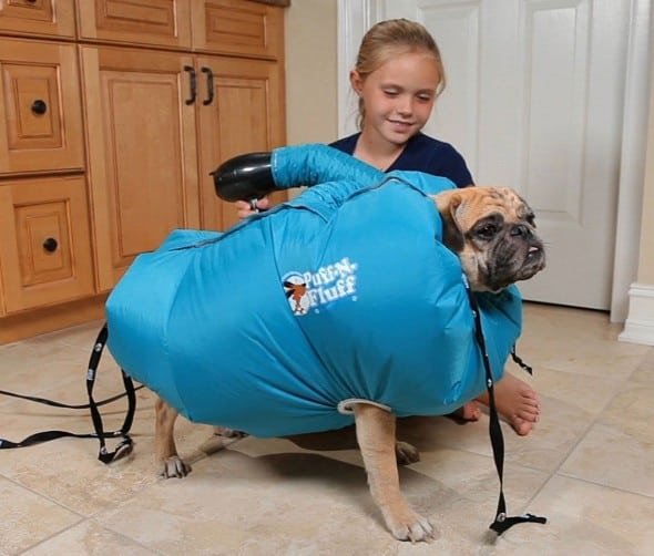 Puff-N-Fluff Dog Dryer Buy Something Better that a Pet Towel