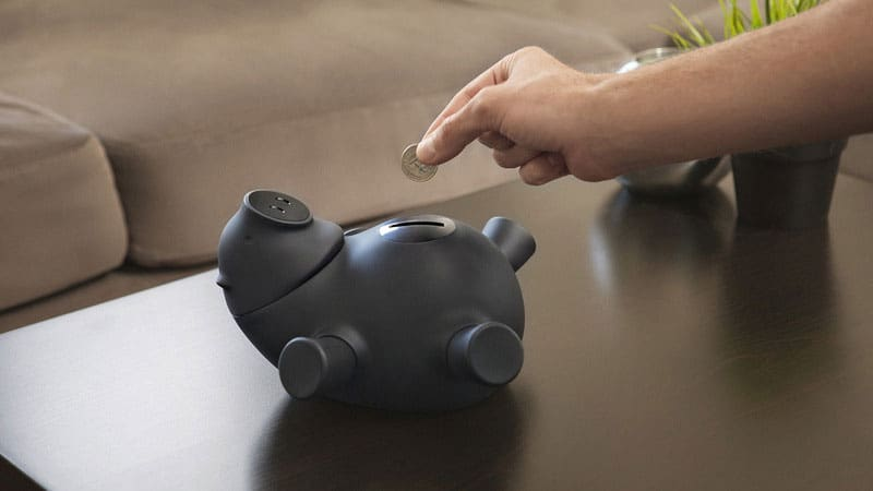 Quirky Porkfolio Coin Bank Cute Black Piggy