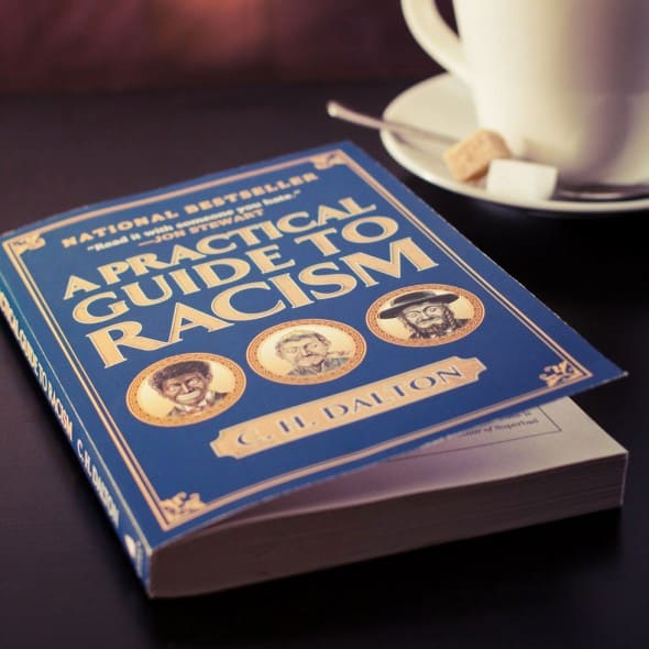 A Practical Guide to Racism Funny Book to Read