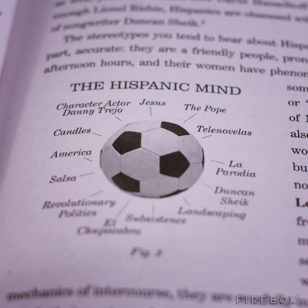A Practical Guide to Racism Hispanic Mind