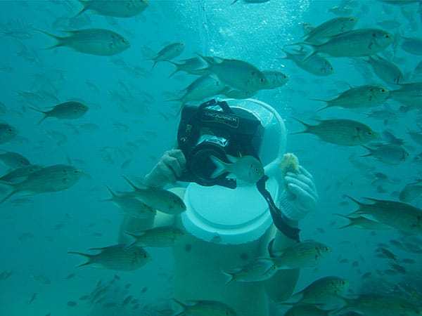 Dicapac WP-S10 Waterproof Case  School of Fish
