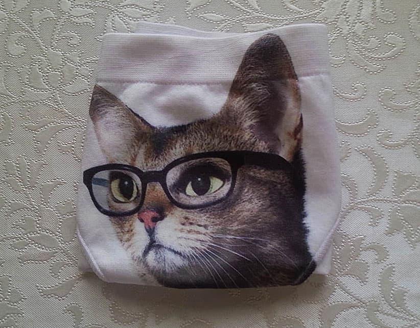 Water Stars Smart Cat Panty Funny Novelty Item