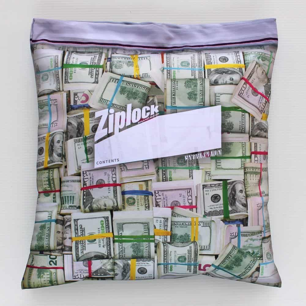 Steelplant Cash in Ziplock Pillowcase Funny Gift Idea